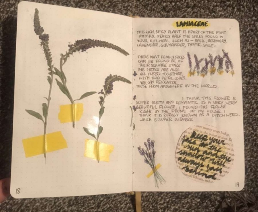 Sophomore Chloe Irwin uses her bullet journal to channel her creativity. By doing so, she is able to look back on her feelings, as well as her daily tasks.