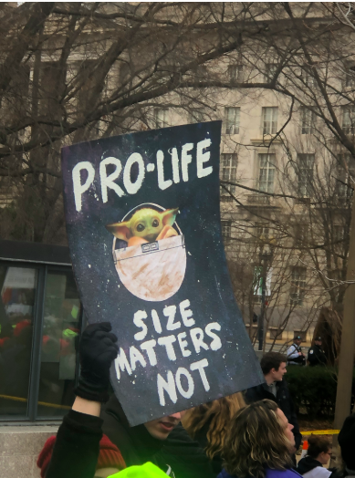 Size Matters Not: Pro-lifers hold up signs protesting the idea that fetal development is a valid argument for abortion.