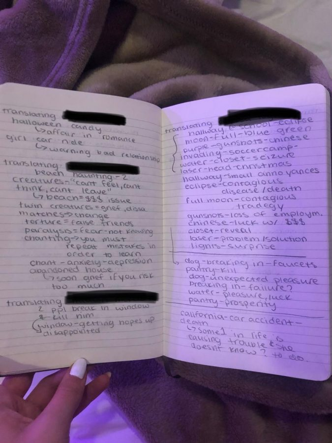 Ryla Stark's dream journal with many of her friend's entrees. The journal describes their dreams and the meanings.