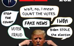 During the 2020 presidential race, Donald Trump said many things about Biden, voter fraud, and mail-in votes.